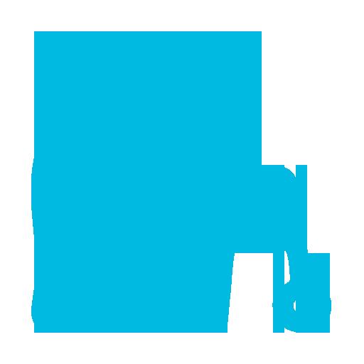 Geriatric and Elder Care